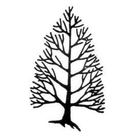 Baum 04