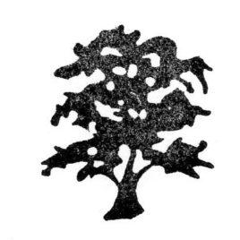 Baum 01