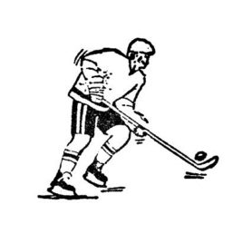 Hockeyaner