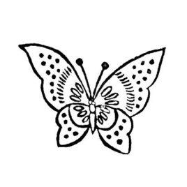 Schmetterling 05