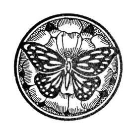 Schmetterling rund