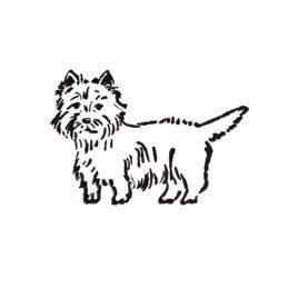 Hund 06 links