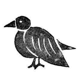 Vogel links