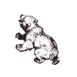 Bär-Baby