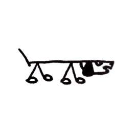 Hund 17a rechts gross